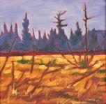 Autumn Wetland 1