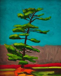 White Pine 2 - Oil on Canvas - 8x10
