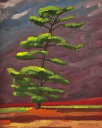 White Pine 3 - Oil on Canvas - 8x10